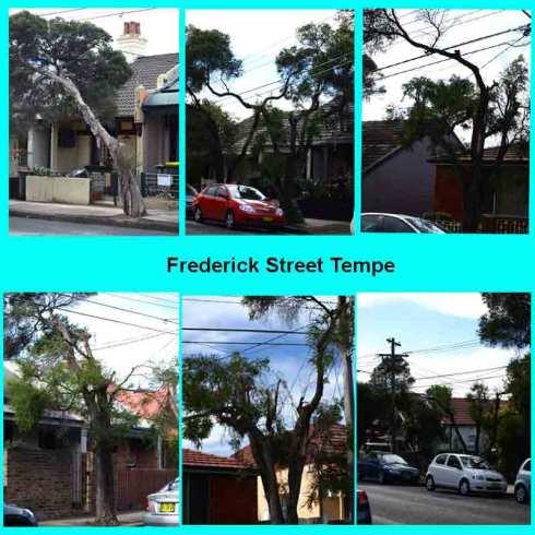 Frederick-St-Tempe1