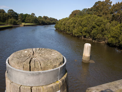 The Cooks River - our little piece of paradise that must be protected