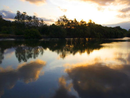 The Cooks River is a jewel in the LGA.