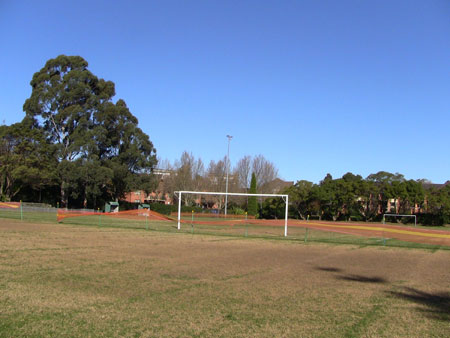 Arlington Oval, though the 2 Sydney Blue Gums on the left have been removed.