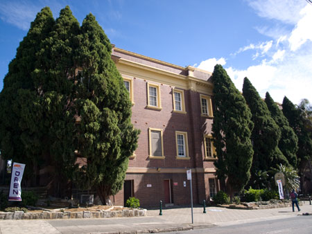 These trees have been pruned to be 1-metre away from the facade. They are home to thousands of small birds.