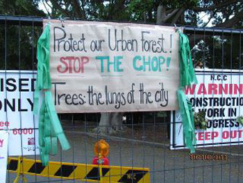 community protest   SAVING OUR TREES - Marrickville municipality