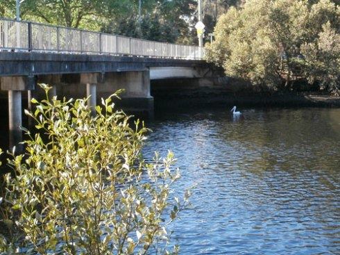 Cooks River at the Illawarra Road bridge Marrickville
