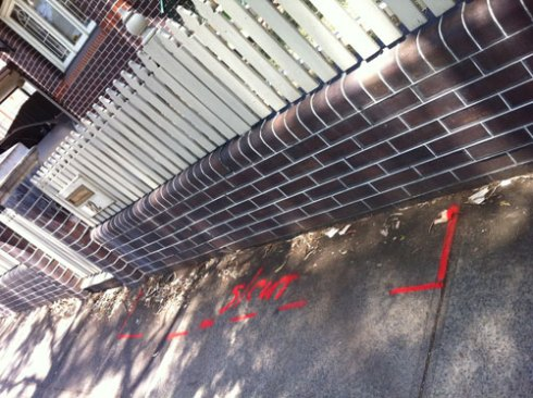 The fence & the red markings sprayed by Council workers.