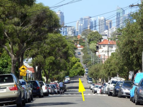 The arrow points to the street tree to be removed. As you can see, it is the best in Westbourke Street.