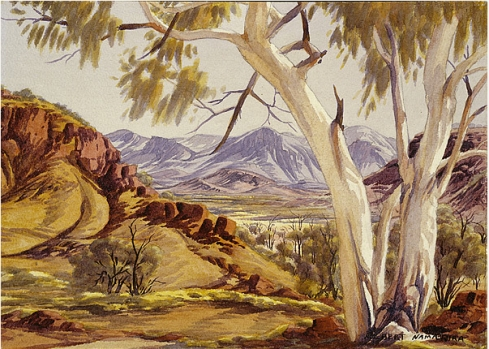 The trees featured in many of Albert Namatjira's paintings.  Image from the National Gallery of Australia.
