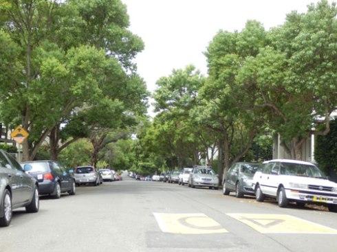 Lush & green Victoria Street Duwlich Hill