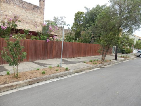 New verge gardens at the entrance to Lincoln Street Dulwich Hill