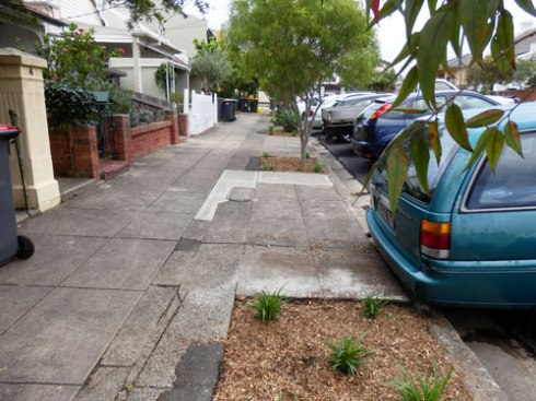 Some of the new verge gardens in  Lincoln Street Dulwich Hill