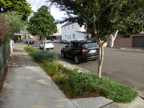 I was stunned when I first saw the size of this verge garden in Greenbank Street. You can see the original verge garden on the far left.