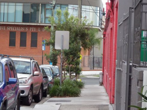 It's great to see verge gardens & street trees so close to Parramatta Road.
