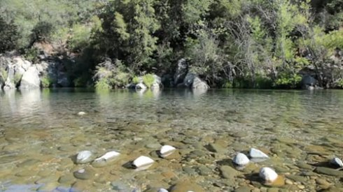 A screenshot of the Yuba River from the documentary - How the Kid's Saved the Park.