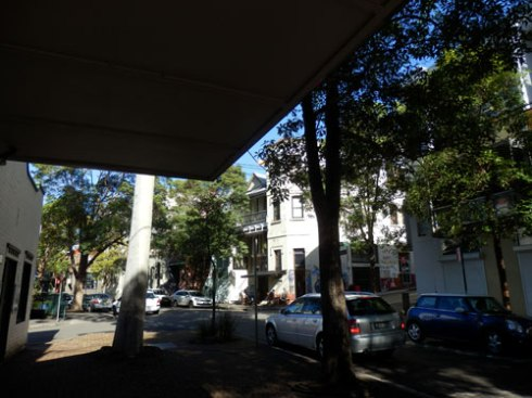 Look the other way & again, the street trees are tall with a large canopy.  The white pole on the left is a Gum tree.