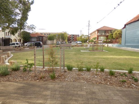 Planted in Kintore Street Dulwich Hill in 2012