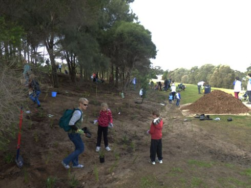 People planted 4,500 plants today at Sydney Park