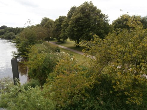 The River Ouse and Rowntree Park