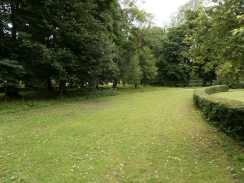 Another section of the lovely Rowntree Park. Lots of trees!