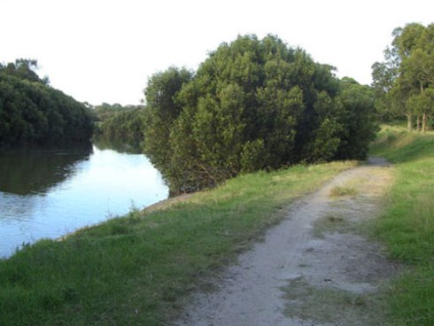 I think this is planting area in Marrickville Golf Course. Wave Rock just beside the river.
