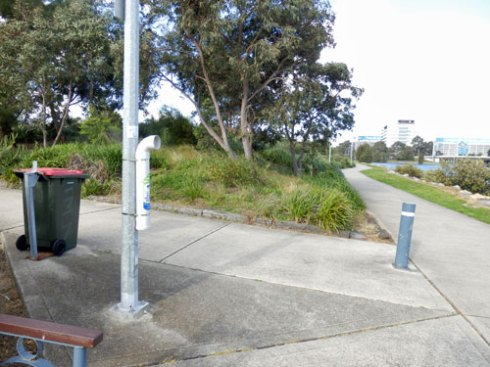 TAngler Bin next to the saltwater wetland.  The most popular fishing spot on the eastern point of Tempe Reserve is not able to be seen at the end of this  path