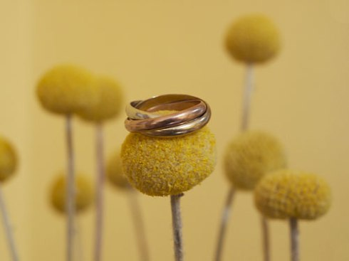 """…even 500 trees growing over a gold deposit would only yield enough gold for a wedding ring."""