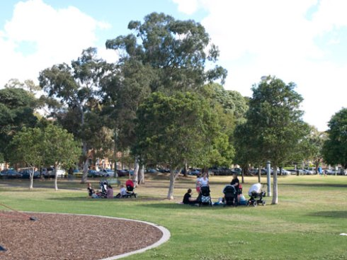Parents & children gathering under the shade of trees in Enmore Park