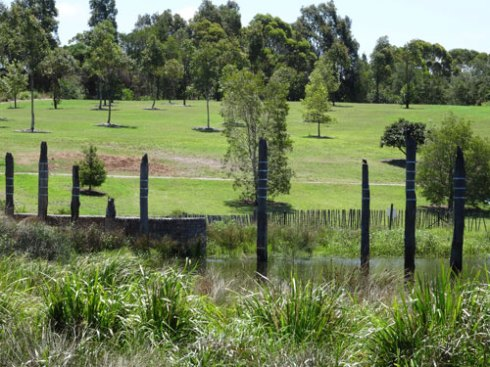 Sydney Park is not in Marrickville municipality.  I include it here because I think the trees & the variety of species is wonderful.  Just imagine what this place will look like in ten or twenty years.  They have planted hundreds of Fig trees too.