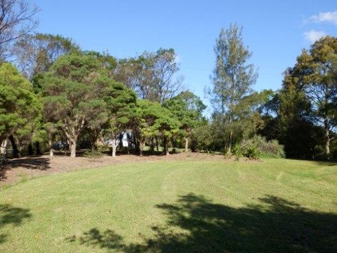 Warren Park Marrickville
