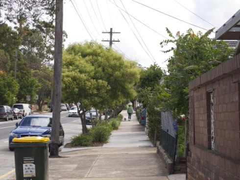 The street trees & the verge gardens along busy New Canterbury Road would be working to prevent a percentage of the particulate matter & other pollutants from getting to the houses.
