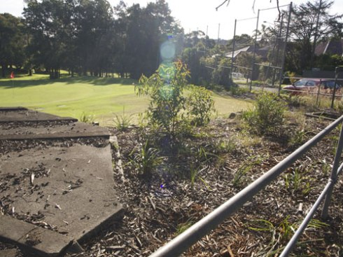 The 2012 National Tree day site in Marrickville Golf Course looking towards Bruce Street.