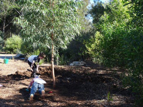 Two children finalise the planting of a 5-metre Gum tree. I bet they watch this tree as it grows with a sense of pride.
