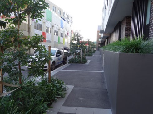 Street tree planting & verge gardens were part of the development project.