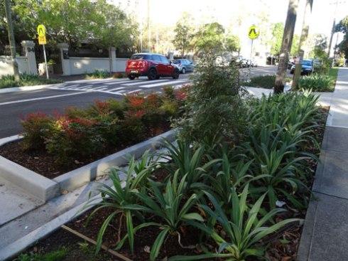 Lovely streetscape work next to Camperdown Park on Mallett Street Camperdown