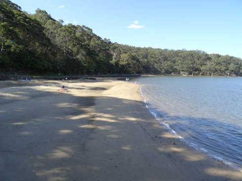 The beach at Oatley Park is a gorgeous place.