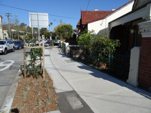 New street trees & verge gardens along Livingstone Road Petersham