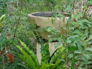 A large birdbath - an amazing & wonderful thing for a local council to offer wildlife.