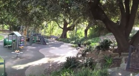 The playground at Hoskins Park is lovely & naturally shaded by the surrounding big trees.