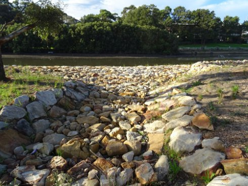 A large swale to take water from Cup & Saucer Creek Wetland to the Cooks River.