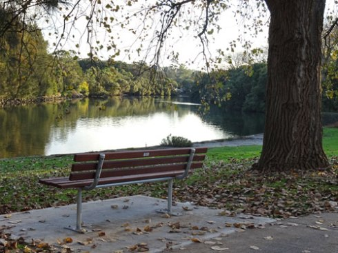 One of two park benches installed at Mackey Park allowing people to rest & enjoy the Cooks River.