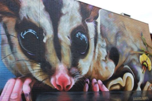 Squirrel Gilder street art - photo by  Doris Billingsley with thanks :-)