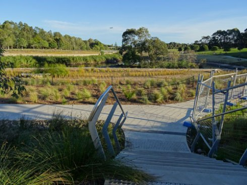 New walkway through the wetlands