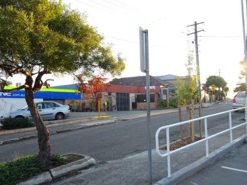 A new street tree was planted in Station Street Tempe right next to the Princes Highway.