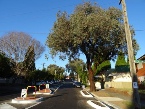 This is a very beautiful street tree, so Council's work to keep it is much appreciated.