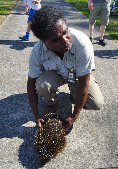 Leon from Taronga Zoo with Spike the Echidna.