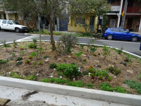 A very large public herb garden has been installed in Bray Street.  This garden has been reclaimed from the road.  It slows down traffic, coools the area, brings the community together & adds beauty - an all round winner.
