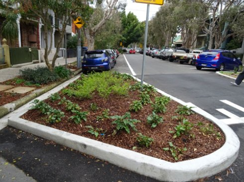 Showing another corner of reclaimed road.  There is design in the plants used & the council has not resorted to planting only native grasses.