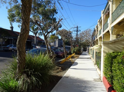 In 2015 Marrickville Council created new verge gardens on both sides of Dickson Street Newtown.  Recently these were planted on a community planting day.  It looks great.