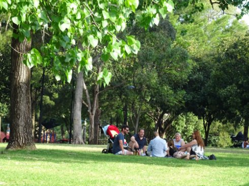 People enjoying the shade in Camperdown Memorial Rest Park  and there were many groups doing exactly this in other areas of shade.