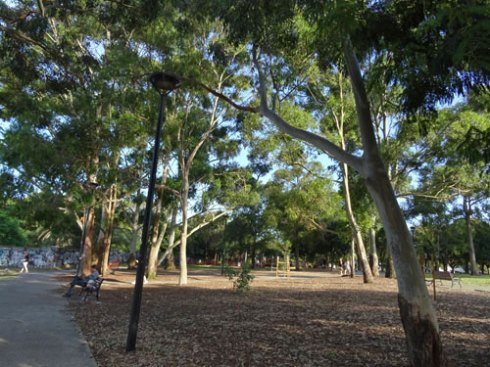 Lots of trees has transformed this park into a pleasant green space for locals.
