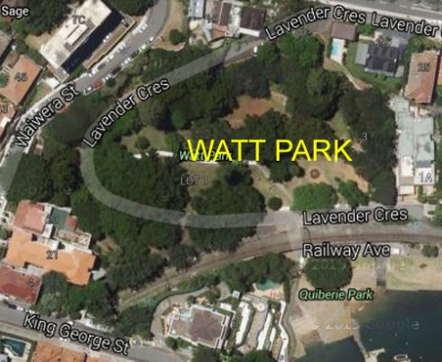 Google map of Watt Park.  Just look at that canopy cover.