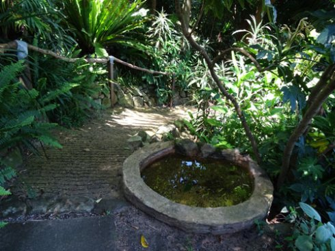 Birdbaths were everywhere.  Some were big like this one.  Others were small, a steel  lid.